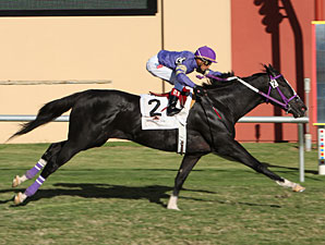 Cherokee Lord wins the 2011 Remington Green Stakes.