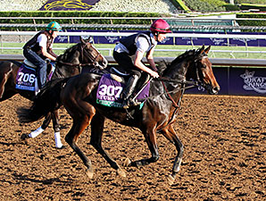 Chicquita, Upstart - Breeders' Cup 2014
