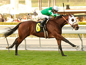 Chips All In wins the 2011 Eddie Logan.