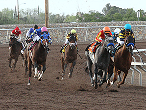 Chitu (Teal Hemlet) and Midnight Hawk (Grey)  running in the Sunland Derby.
