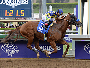 Chitu wins the 2014 Damascus Stakes