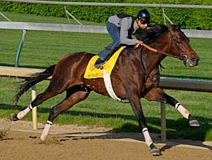 Chocolate Candy Has Final Belmont Work