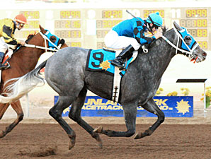 Chuchuluco wins the 2010 Johnie L. Jamison Stakes.