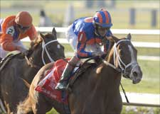 Kentucky Derby Trail: Torrid Todd Takes Two...Or Was it Three?