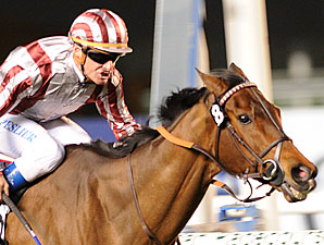 Favored Cirrus des Aigles Out of HK Cup