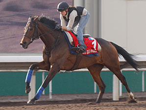 Cirrus Des Aigles - Hong Kong, December 7, 2011.