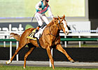 Deauville's Le Marois to Offer Mile Bid