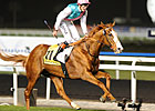 Dubai Duty Free Winner Cityscape to Overbury