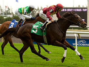 Clarinet wins the 2012 Flaming Page Stakes.