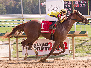 Classy Coco wins the 2012 Maryland Million Lassie.