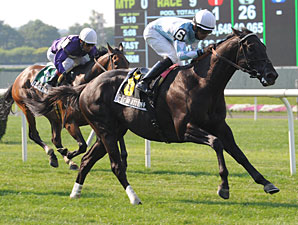 Clear Attempt wins the 2012 Poker Stakes.