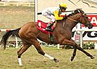 Rovenna, Clenor Top Senorita Stakes