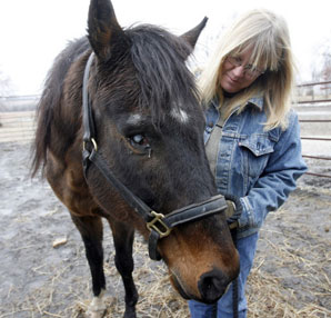 Rescued Clever Allemont to Old Friends