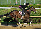 Oaks-Bound Close Hatches Breezes at Churchill