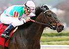 Close Hatches Proves Class in Azeri Stakes