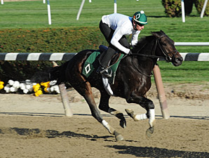 Mott Pleased With Royal Delta, Close Hatches