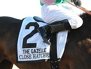 Close Hatches wins the 2013 Gazelle.