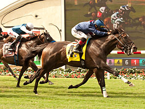 Closing Range wins the 2013 Osunitas Stakes.