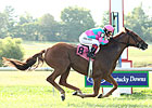Cloudy's Knight Makes Return in KY Cup Turf