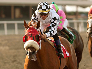 Clubhouse Ride wins the 2013 Californian.