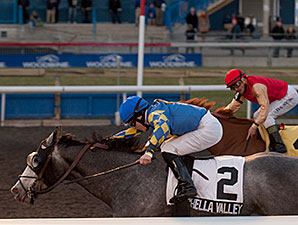 Coachella Valley wins the 2013 Jammed Lovely Stakes.