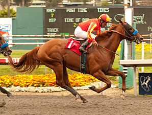 Coil Foiled, Draws Rail in Haskell