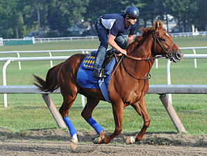 Coil Drills Six Furlongs for Travers