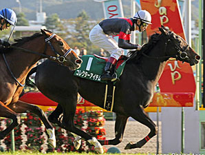 Filly Championship on the Line at Hanshin