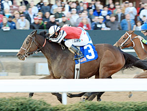 Color Me Blue wins the 2012 Fifth Season.