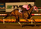 &#39;Comma&#39; Gets His Running Shoe On in Futurity