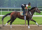 Commanding Curve Entered in Curlin Stakes