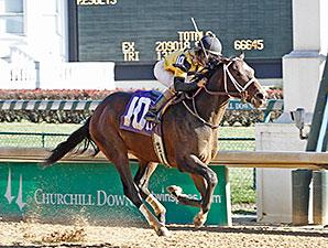 Commanding Curve Maiden Win, November 30, 2013.
