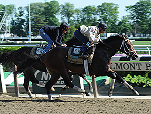 Commissioner, Matterhorn in Belmont Workouts