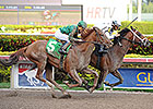Commissioner Likely to Run in Arkansas Derby