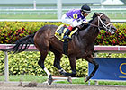 Competitive Edge Wins Comeback at Gulfstream