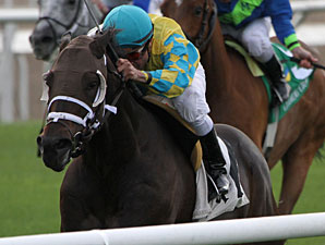 Compliance Officer wins the 2011 Claiming Crown The Emerald.