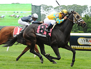 Compliance Officer wins the 2012 Kingston Stakes.