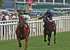 Conduit Channels Victory in St. Leger