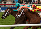 Conquest Harlanate Takes Natalma, B.C. Slot