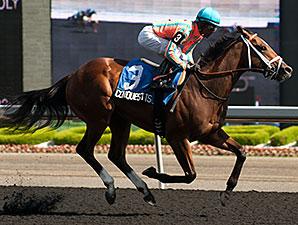 Conquest Tsunami wins the 2014 Victoria Stakes.