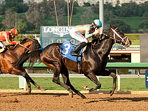 Conquest Two Step wins the 2015 Palos Verdes Stakes.
