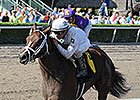 Constitution to Make Stakes Debut in FL Derby