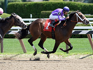 Pletcher Has Strong Hopes in Matron, Futurity
