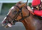 Breeders&#39; Cup Focus: Corinthian