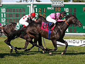 Corporate Jungle wins the 2012 Elkwood Stakes.