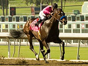 Sadler Seeking Fifth Los Angeles Handicap Win