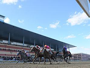 Coup de Grace wins the 2014 Bay Shore Stakes.