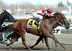 Coup de Grace Finishes Strong in Bay Shore