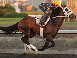 Court of the Realm - Woodbine 09/12/11
