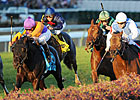 Court Vision Upsets Goldikova in BC Mile